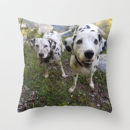 Creek Diggers Throw Pillow