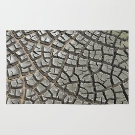Texture #14 Drought Rug