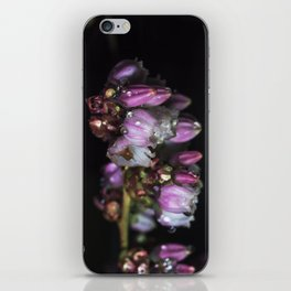 Blueberry blossom rain drops iPhone Skin