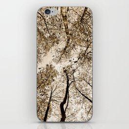 Sepia fall iPhone Skin