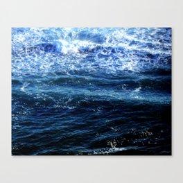 Our Oceans Canvas Print