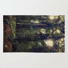 Sunrays in the Redwoods Rug