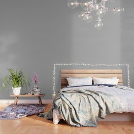 Simple Gray / Grey Luxe Solid Color Wallpaper