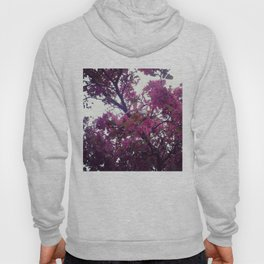 North By North Ave Hoody