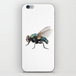 Blow fly species Lucilia caesar iPhone Skin