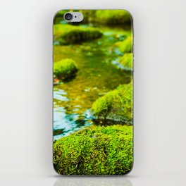 Stepping Stones iPhone Skin