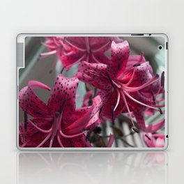 Prosper Laptop & iPad Skin