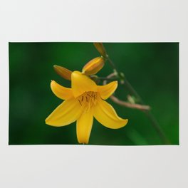 Blossoming Golden Yellow Lily on Green Background Rug