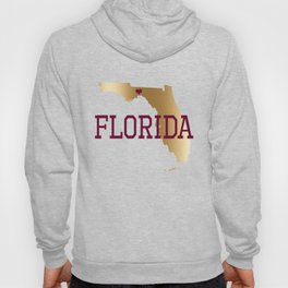 Florida Gold and Garnet with State Capital Typography Hoody
