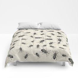 Weevil Beetle chaos Comforters