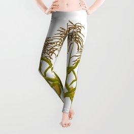 Corn maize pattern Leggings