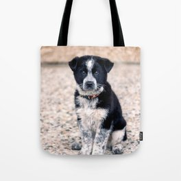 Theo Sit Stay Tote Bag
