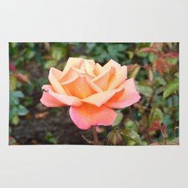 Scottish Rose Rug
