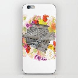 Ruban  iPhone Skin