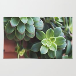 Succulent Loveliness Rug