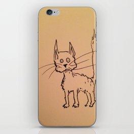 Cat 1 iPhone Skin