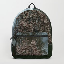 Ominous Clouds, White House Backpack