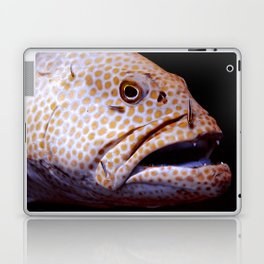 Coral Grouper Being Cleaned Laptop & iPad Skin