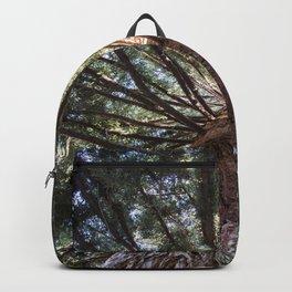 Beautiful Trees / 3 Backpack