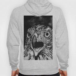 Fierce Falcon Hoody
