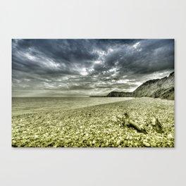 Jurassic Sky  Canvas Print