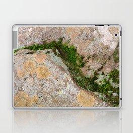 Yin Yang Moss Stone Laptop & iPad Skin