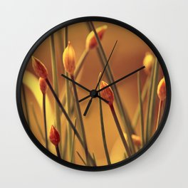 Allium 175 Wall Clock