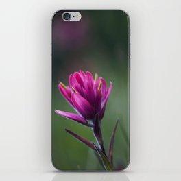 Pink Indian Paintbrush iPhone Skin