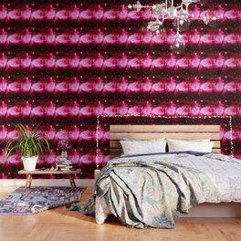 A Star is Born : Hot Pink Galaxy Wallpaper