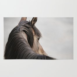 Horse Close Up Photograph, Western Horse Rug