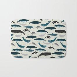 Whales and Porpoises sea life ocean animal nature animals marine biologist Andrea Lauren Bath Mat
