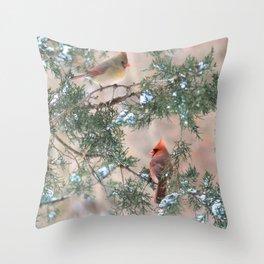 Winter Pair Cardinals (sq) Throw Pillow