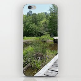 Swampy Path iPhone Skin