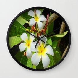 Enchanting Frangipani Wall Clock