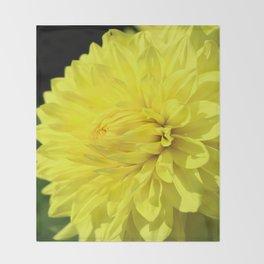 Glowing Yellow Dahlia Throw Blanket
