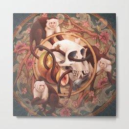 Capuchin Vanitas Metal Print
