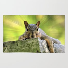 Relaxed Squirrel Rug