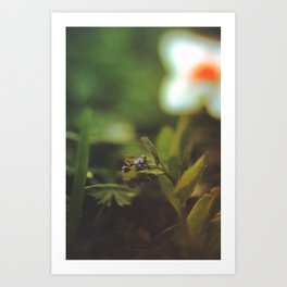 La Petite Fleur Art Print