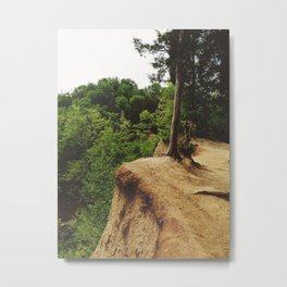 Weathered Heights  Metal Print