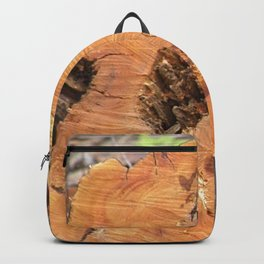 TEXTURES - Manzanita in Drought Conditions #2 Backpack