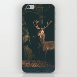 Red deer stag at edge of forest lit by sunlight. iPhone Skin