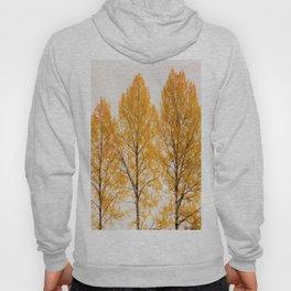 Aspen Trees #decor #buyart #society6 Hoody
