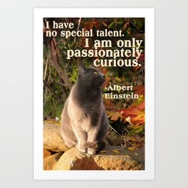 Passionately Curious Art Print