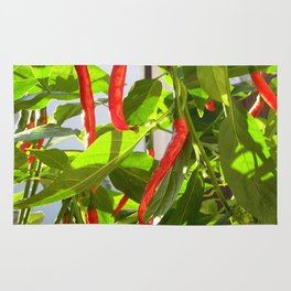 Hot peppers Rug