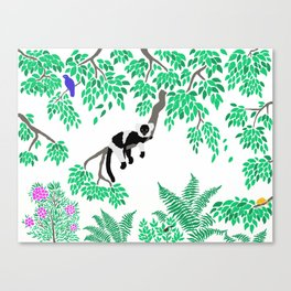Rainforest Madagascar Canvas Print