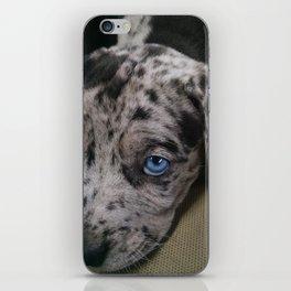 My Dixie Blue iPhone Skin