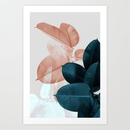 Plant Leaves, Tropical Leaves, Botanical Art Print