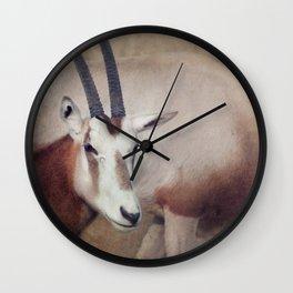 Scimitar oryx Wall Clock