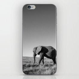 Lone female elephant walking along African savanna iPhone Skin
