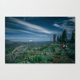 Mt Shasta view Canvas Print